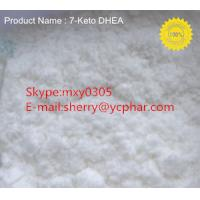 Raw Powder 7-Keto-dehydroepiandrosterone CAS:  566-19-8 99% Purity With Factory Supplier!!!