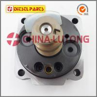 Quality Ve Pump Head Rotor 146402-3820 4CYL/11L for Isuzu Pick Up 4JA1 for sale