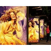 Anti UV Laminated Banner Printing Material , Commercial Events PVC Advertising Banners