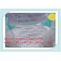 Test PRO Anabolic Steroids Testosterone Propionate for Muscle Building CAS No 57-85-2