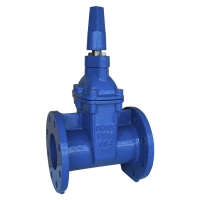 Quality DN125 SABS664 Cast Iron Resilient Seal Gate Valve With Non Rising Stem for sale