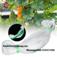 Quality high quality virgin Agriculture Net ,Vegetable Net, Cucumber Net Plastic netting pp cucumber net plant support net for sale