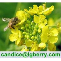 Buy cheap Natural Rape Flower Bee Pollen from wholesalers