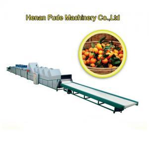 Quality sugar orange sorting machine, sugar orange grading machine for sale