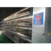 Quality Professional Automatic Manure Removal System For Modern Chicken Farm for sale