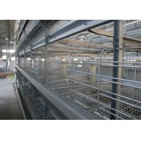 Quality High Efficiency Poultry Layer Cage Poultry Control Shed Farm Equipment for sale