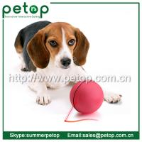 China LED ball pet toy, Electronic dog toy, Plastic LED ball dog toy on sale