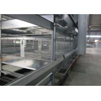 Quality Double Side Automatic Egg Collection System / Egg Farm Machinery Simple Structure for sale