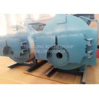 Quality Stainless Steel High Efficiency Gas Boiler , Natural Gas Steam Boiler for sale