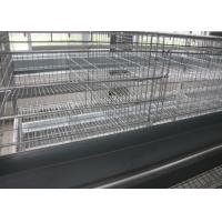 Quality H Type Layer Chicken Cage Full Automatic Open House Battery Cage System for sale