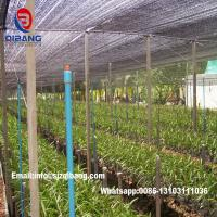 Quality 50%-90% Shade rate Black HDPE UV protection Shade Cloth, Shade Netting for Agriculture Use for sale