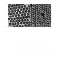 Magnetic Polymer Beads