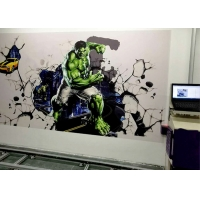 Quality 720x720DPL SSV-S4 4nozzles Wall Mural Printer for sale