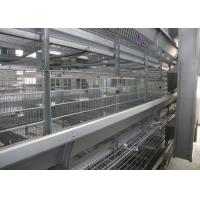 Quality Hot Galvanized Automatic Egg Collection Machine 15-20 Years Lifespan for sale