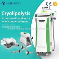 Quality New design body shaping slimming cryolipolysis machine nubway,cavitation RF Vacuum slimming machine double chin removal for sale
