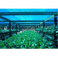 Buy cheap Greenhouse Shade Net ,Agricultural Shade Cloth For Flower Farm from wholesalers