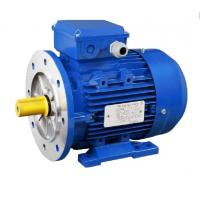 China AC Electric 3 Phase Induction Motor FUJIAN MINDONG Motor 400V 50HZ Stainless Shaft for sale