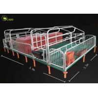 Quality Pig Breeding Equipment Galvanized Pig Limit Pen Elevated Pig Farrowing Crate for sale