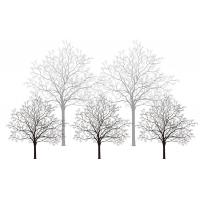 Quality Trees Bamboo Fiber Interior Decorative Wall Panels For Living Room Fireproof for sale