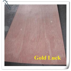 China Hot Sale Bintangor /Okoume Plywood for Furniture on sale