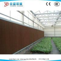 Quality Greenhouse/Poultry Farm Cooling Pad 7090 Brown  Size Customized for sale