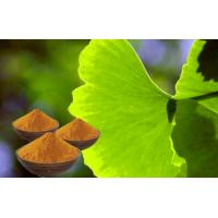 Quality Pharmaceuticals Grade Ginkgo Biloba Standardized Extract GMP Certificated for sale