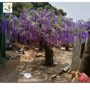Best UVG wedding planner artificial flower arrangements purple wisteria blossoms fake tree for beach club decoration wholesale