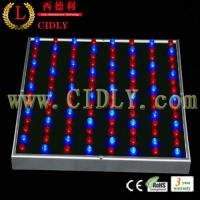 China New Low Power LED Grow Light 45W for Greenhouse and Seeding on sale