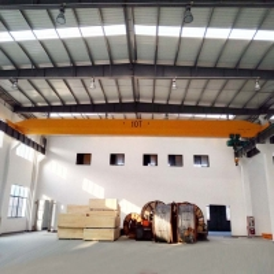 Quality Span 31.5m Stockyard 5T Single Girder Bridge Crane With Hoist for sale