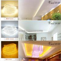 IP65 Water Proof Decorative Flexible Led Strips 3528 SMD Christmas Light Strip