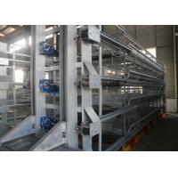 Quality High Tech Poultry Cage  System / Cage Holding Poultry Easy Daily Management for sale