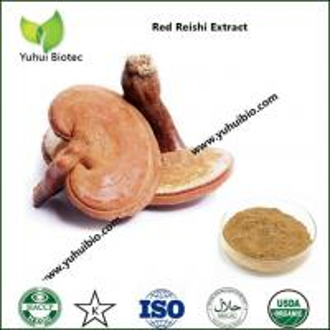 Quality ganoderma extract,ganoderma lucidum extract,ganoderma lucidum polysaccharide for sale