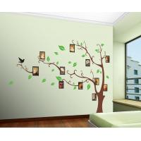 Quality Creative Tree And Photo Removable Wall Stickers Vinyl For Lounge for sale
