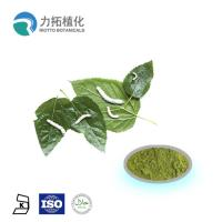 Quality Mulberry  leaf extract powder / DNJ Weight loss activities against a-glycosidase for sale