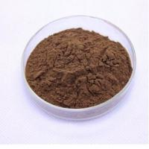 Quality Natural Reishi Mushroom Extract Ganoderma lucidum Extract 10% polysaccharides+0.5%triterpenes for sale