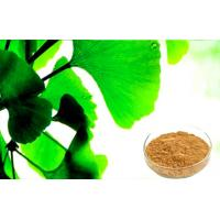 Quality Water Soluble Ginkgo Biloba Powder For Improving Mental Performance for sale