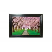 China Large Format Lenticular Photo Printing 0.6mm PET+157g Coated Paper Material on sale
