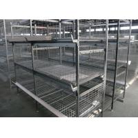 Quality Industrial Broiler Chicken Cage Farming Conventional Cages For Laying Hens for sale
