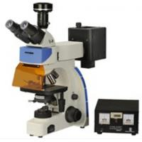Buy cheap 10X - 1000X plan achromatic optical system Laboratory Fluorescence Microscopes from wholesalers