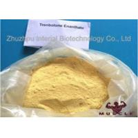 Buy cheap Raw Yellow Crystalline Trenbolone Enanthate Powder , Tren E Steroids For Lean from wholesalers