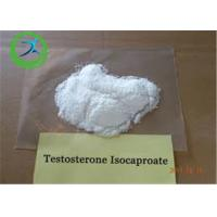 Buy cheap Anabolic Steroid CAS 15262-86-9 Testosterone Isocaproate Powder for Bodybuilding from wholesalers