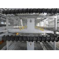 Quality High Efficiency Baby Chick Cage Poultry House  Highly Corrosion Resistant for sale