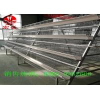 Quality Hot Galvanized Poultry Manure Removal System 5 Tiers Intelligent  Control for sale
