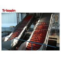 Quality Fully Automatic Tomato Paste Processing Line Tomato Scraper Elevator Standup Pouch for sale