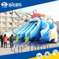 Quality cheap commercial grade inflatable water slides for summer for sale