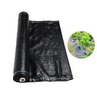 China Recyclable Black Plastic Ground Cover , PP Woven Fabric Roll For Agriculture / Garden on sale