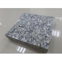 Quality Top Quality Chinese Ariston Grey Granite,Granite Tile,Granite Slab,Granite Cubes,Grey Paving for sale