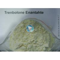 Buy cheap anabolic steroids the bulking cycle trenbolone ace hormone introduction from wholesalers