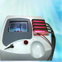 Quality SPA Used Professional Lipo Laser Slimming Machine 5A For Body Sculpting , IPXO for sale