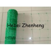 Quality Plant Climbing Net for sale